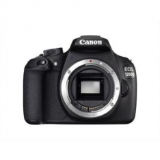 CANON KIT EOS 1200D + EF 18-55 DC III + EF 50 1.8