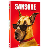 SANSONE - DVD