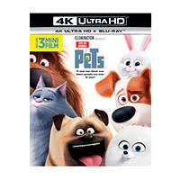 PETS - Vita da Animali (4K Ultra HD) - Blu-Ray